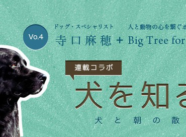 【米国発】連載コラボ企画!第4回目:犬と朝の散歩