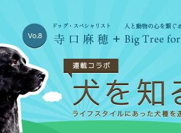 【米国発】連載コラボ企画!第8回目:ライフスタイルにあった犬種を選ぶ大切さ
