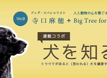 【米国発】連載コラボ企画!第9回目:トラウマがあると(思われる)犬を譲渡する際の心構え
