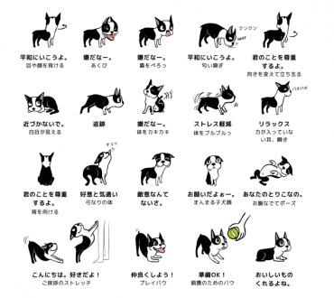 【紹介】動物について学ぼう!
