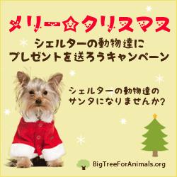 christmas-big-tree-250x250