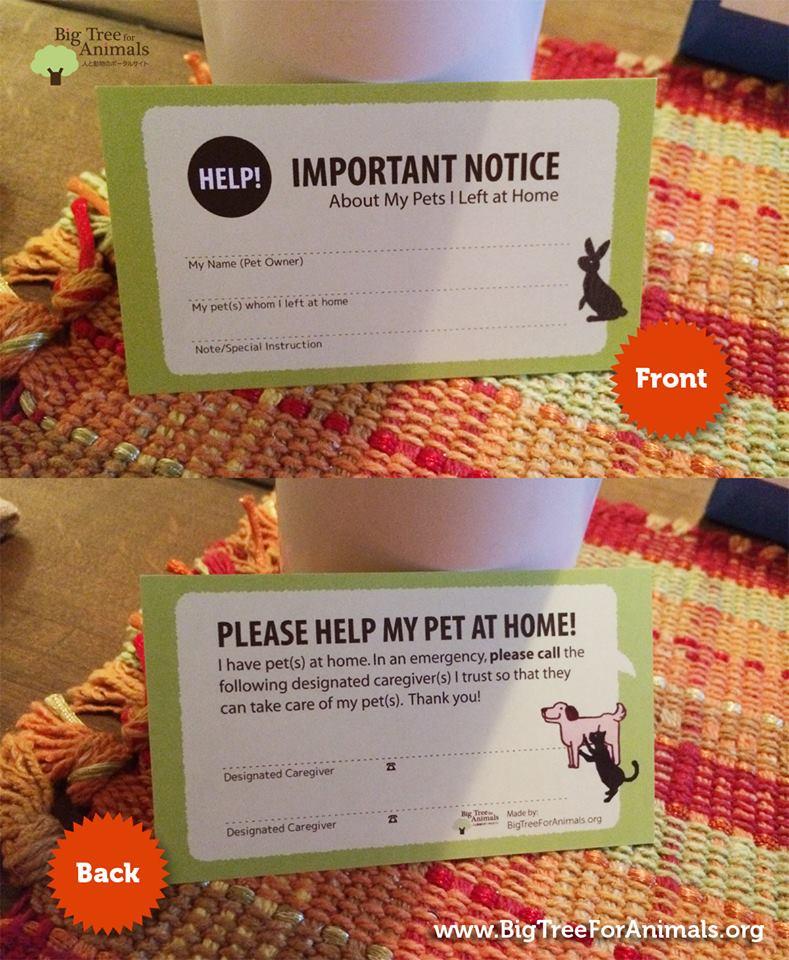 Pet Alert Card printed by vistaprint.com