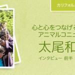 【後半/米国発】アニマルコミュニケーター、太尾和子さんへのインタビュー