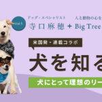 【米国発】連載コラボ企画!第5回目:犬にとって理想のリーダーとは?