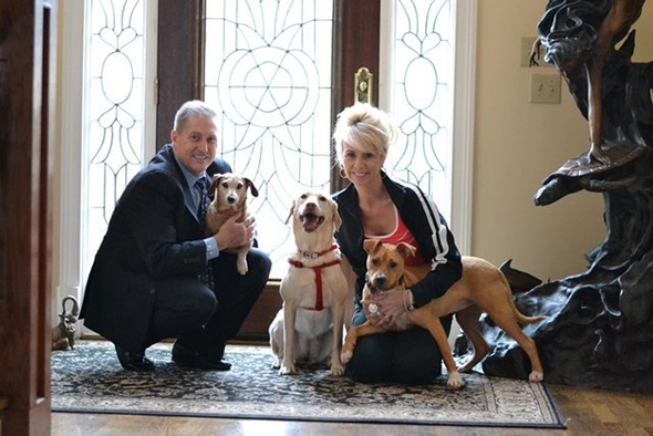 ジョニー君のご両親、ジーナと2匹の先住犬(すべてレスキュー犬)