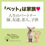 「ペット」は家族♥人生のパートナー 師、友達、恋人、子供