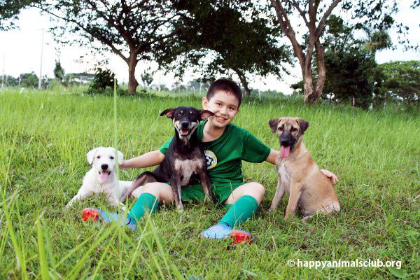 ken-healthy-dog5