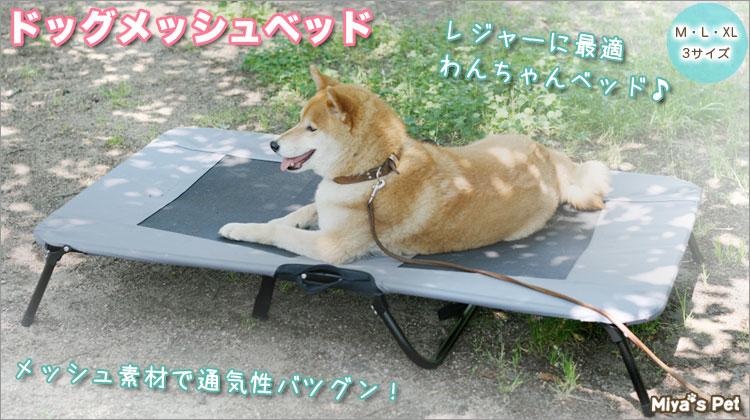 dog-mesh-bed