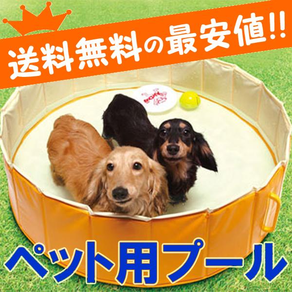 pet-pool