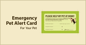 Pet Alert Card