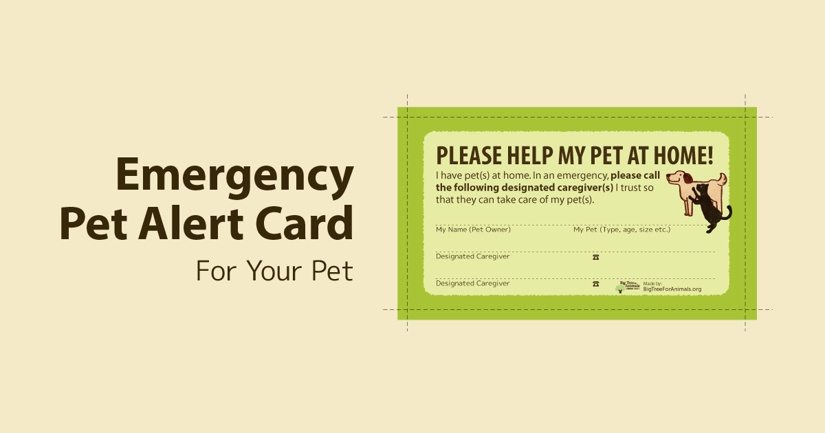 Emergency Pet Alert Card