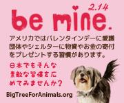 Be Mine. 動物達にもバレンタインデー!