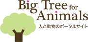 Big Tree For Animals