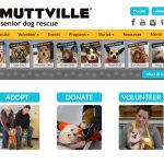Muttville home page