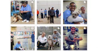受刑者と保護犬のポジティブ・チェンジ・プログラム
