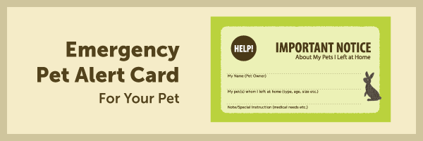 Emergency Pet Alert Card for your pet